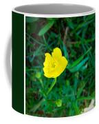 Single Yellow Buttercup Coffee Mug