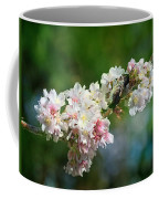 Sitting Guard In The Cherry Blossoms Coffee Mug