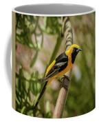 Sitting On The Agave Coffee Mug