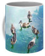 Six Ducks Swim Together Coffee Mug