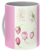 Six Heads Of Old Fashioned Roses Coffee Mug