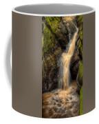 Skillet Creek Into The Deep Pool Coffee Mug