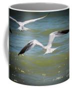 Skimmers In Flight Coffee Mug
