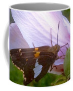 Skipper Butterfly With White And Orange Colors Coffee Mug