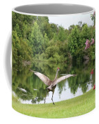 Skipping Sandhill Crane By Pond Coffee Mug