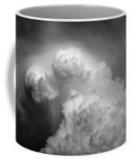 Skirting The Storm Coffee Mug