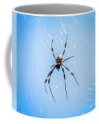 Sky Blue Web Coffee Mug
