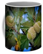 Sky Lit Oak Acorns Coffee Mug