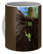 Sky View Through A Hollow Tree Trunk Coffee Mug