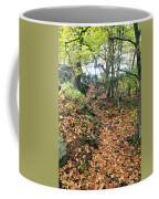 Skylands Path P Coffee Mug