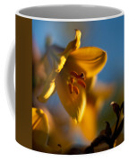 Skylit Lily Coffee Mug