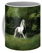 Slainte Coffee Mug