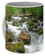 Slate Creek, Nez Perce National Forest, Idaho Coffee Mug