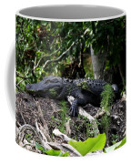 Sleeping Alligator Coffee Mug