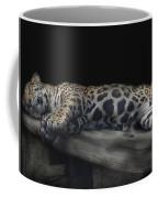 Sleeping Beauty Coffee Mug by M Montoya Alicea