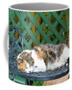 Sleeping Cutie Coffee Mug