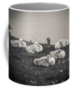 Sleeping Cygnets Coffee Mug