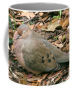 Sleeping Dove Coffee Mug
