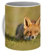 Sleeping Fox Kit Coffee Mug