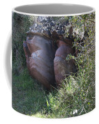 Sleeping In The Jungle - Stone Face In Forest Coffee Mug