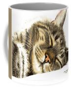 Sleeping Tabby Cat  Coffee Mug