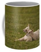 Sleepy Lamb Coffee Mug