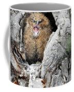 Sleepy Owlet Coffee Mug