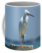 Sleepy Snowy Coffee Mug