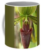 Slipper Orchid Coffee Mug