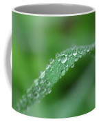 Slippery Slope Coffee Mug