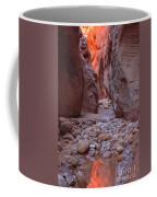 Slot Canyon Reflections Coffee Mug