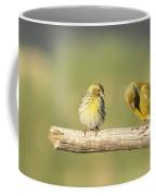 Small And Large Coffee Mug