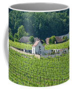 Small Austrian Cemetery  Coffee Mug