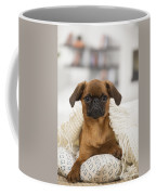 Small Brabant Griffon, Petit Brabancon, Dog  Coffee Mug