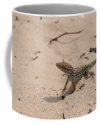 Small Brown Lizard Sitting On A White Sand Beach Coffee Mug