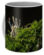 Small Forest Coffee Mug