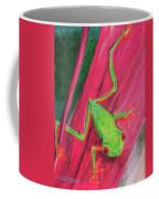 Small Frog Coffee Mug