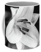 Small Lily-2 Bw Coffee Mug