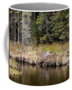 Small Marsh Coffee Mug