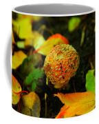 Small Mushroom In Autumn Coffee Mug