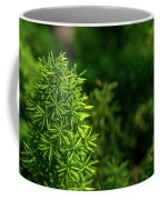 Small Plants Coffee Mug