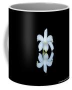 Small Reflection Coffee Mug
