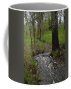 Small Stream In The Woods Coffee Mug