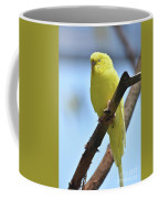 Small Yellow Budgie Parakeet In The Wild Coffee Mug