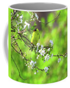 Smelling The Cherry Blossom Male  American Goldfinch Coffee Mug