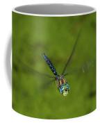 Smiling Dragonfly Coffee Mug