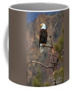 Smith Rock Bald Eagle Coffee Mug