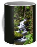 Smokey Mountain Stream Coffee Mug