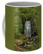 Smokey Mountain Waterfall Coffee Mug