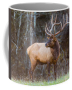Smoky Mountain Elk II - North Carolina's Cataloochee Valley Wildlife Coffee Mug